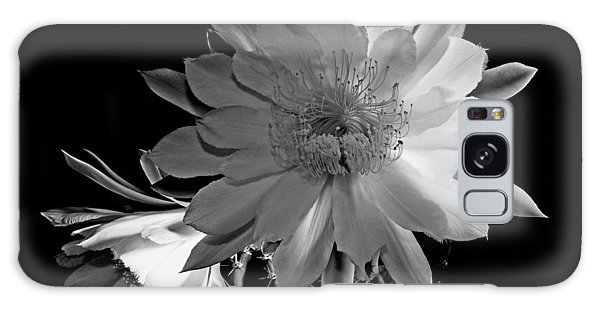 Nightblooming Cereus Cactus Flower Galaxy Case by Susan Duda