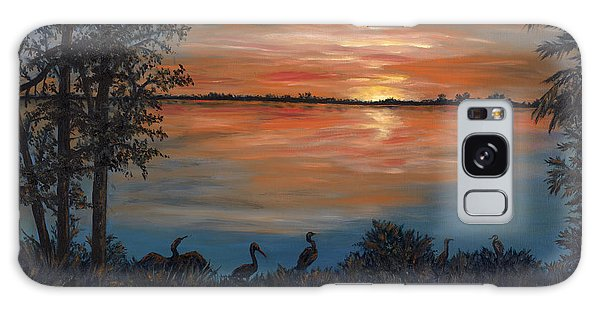 Nightfall At Loxahatchee Galaxy Case