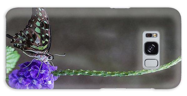 Butterfly - Tailed Jay II Galaxy Case