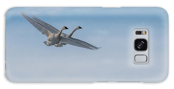 Trumpeter Swans Tandem Flight Galaxy Case by Patti Deters