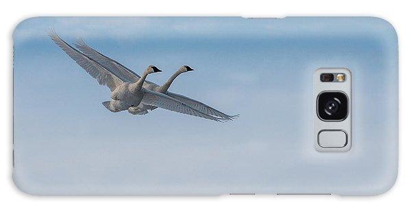 Trumpeter Swan Tandem Flight I Galaxy Case
