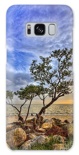 Mangrove Galaxy Case - No Stress Today by Marvin Spates