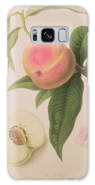 Noblesse Peach Galaxy Case by William Hooker