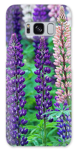 Cairngorms National Park Galaxy Case - Nootka Lupine (lupinus Nootkatensis) by Duncan Shaw/science Photo Library
