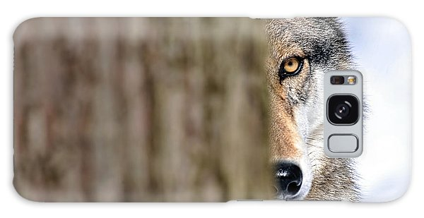 Galaxy Case featuring the photograph North American Gray Wolf Behind Tree by Dan Friend