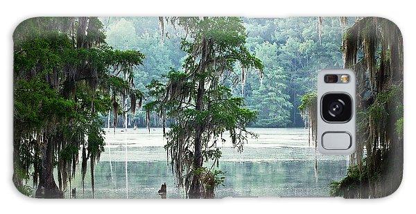Ecosystem Galaxy Case - North Florida Cypress Swamp by Rich Leighton