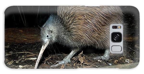 Hunting Island Galaxy Case - North Island Brown Kiwi by Tony Camacho/science Photo Library