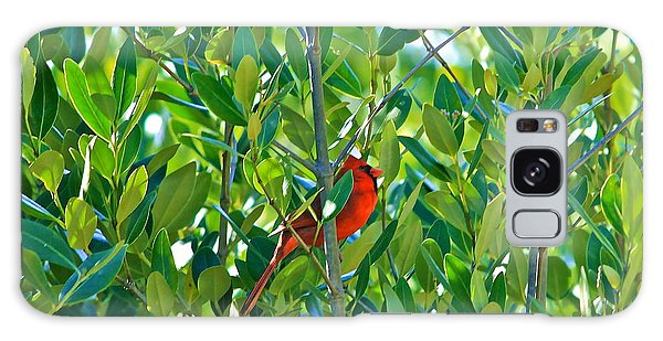 Northern Cardinal Hiding Among Green Leaves Galaxy Case by Cyril Maza