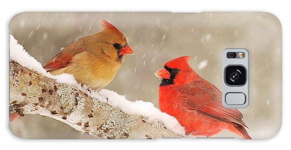 Northern Cardinals Galaxy Case