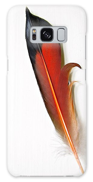 Northern Flicker Tail Feather Galaxy Case