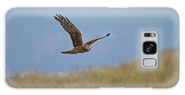 Northern Harrier In Flight Galaxy Case by Duncan Selby