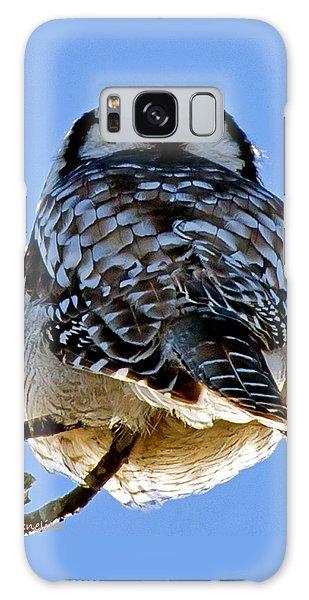 Northern Hawk Owl Looks Around Galaxy Case