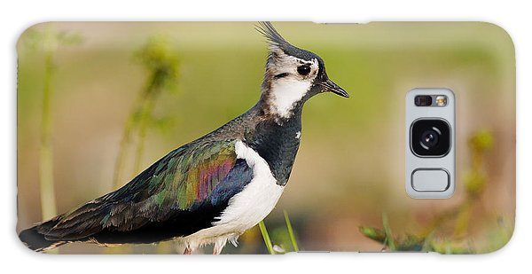 Lapwing Galaxy Case - Northern Lapwing by Willi Rolfes