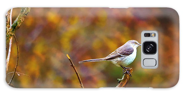 Northern Mockingbird Galaxy Case by Deena Stoddard