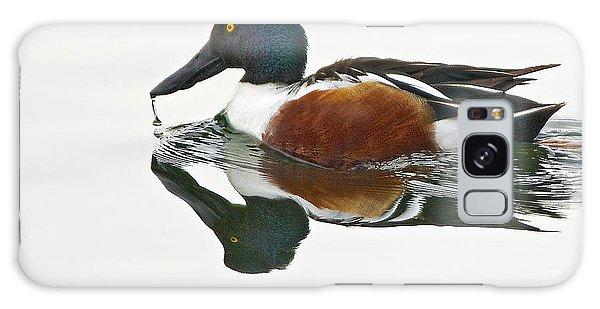 Northern Shoveler Drake At Ketring Lake Galaxy Case by Stephen  Johnson