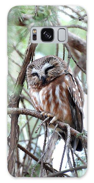 Northern Saw-whet Owl 2 Galaxy Case