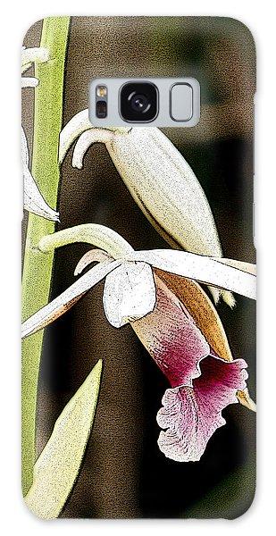 Nun's Orchid Galaxy Case