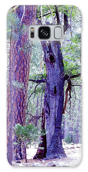 Oak And Ponderosa Galaxy Case