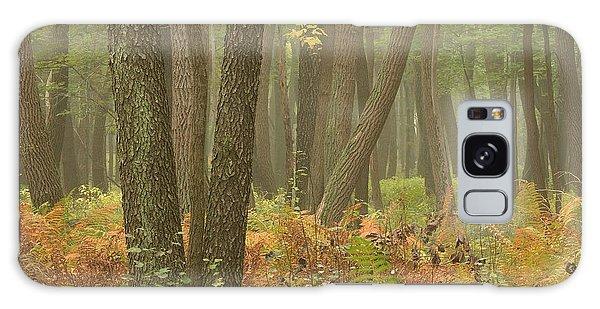 Oak Openings Fog Forest Galaxy Case
