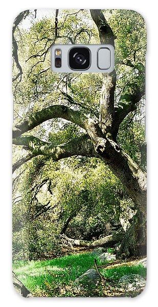 Oak Spirit Galaxy Case by Kathy Bassett