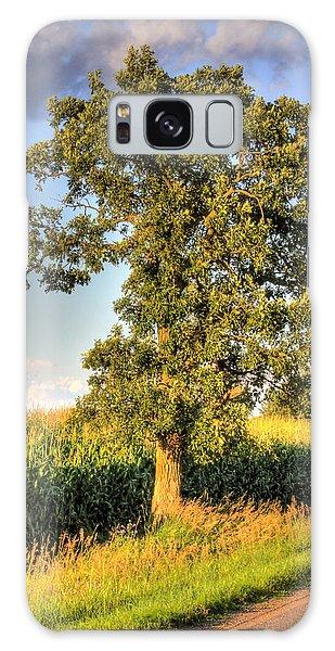 Oak Tree By The Roadside Galaxy Case by Larry Capra