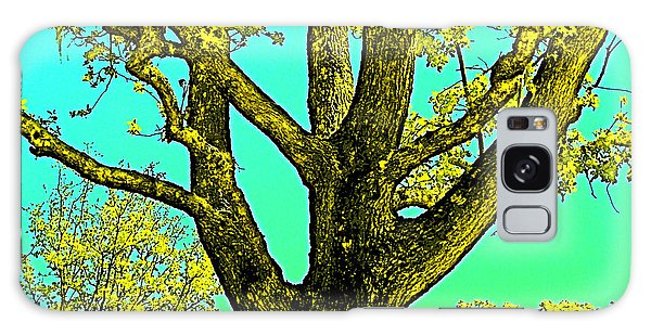Oaks 3 Galaxy Case by Pamela Cooper