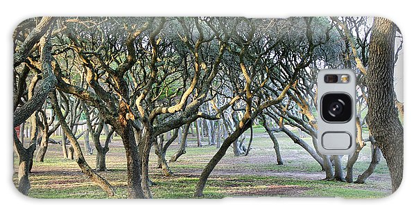 Oaks Of Fort Fisher Galaxy Case by Phil Mancuso