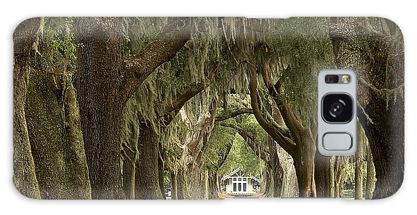 Oaks Of The Golden Isles Galaxy Case by Adam Jewell