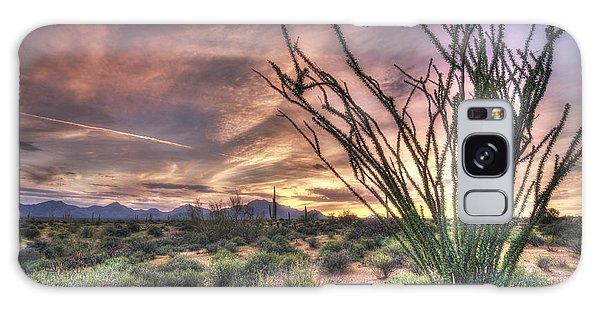 Ocotillo Sunset Galaxy Case