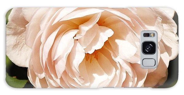 October Rose Galaxy Case by Al Fritz