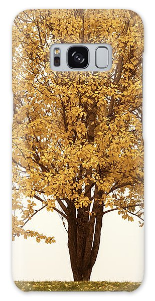 October Trees Galaxy Case