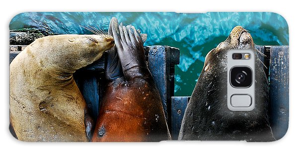 Odd Man Out California Sea Lions Galaxy Case by Terry Garvin
