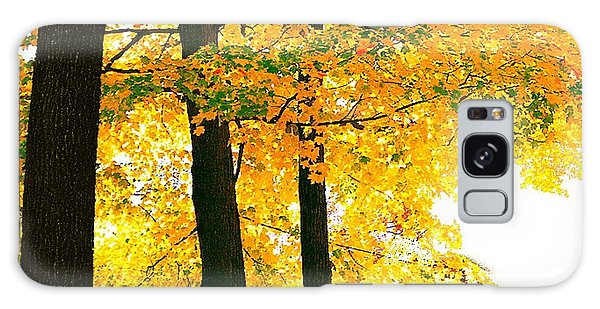 Ohio Autumn Galaxy Case