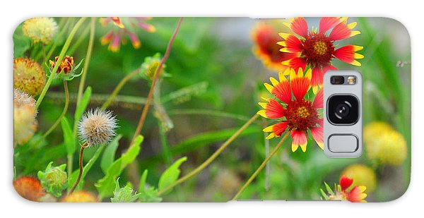 Oklahoma Wildflowers Galaxy Case