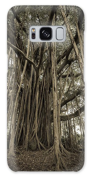 Old Banyan Tree Galaxy Case