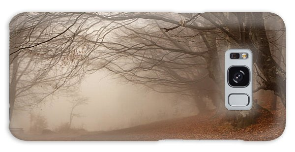 Old Beech Trees In Fog Galaxy Case