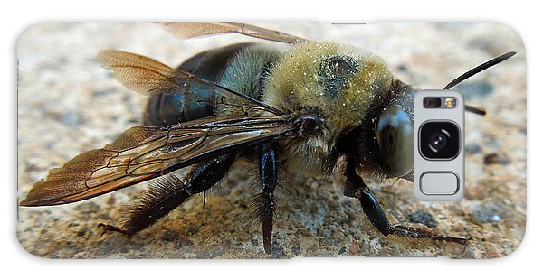 Old Carpenter Bee Galaxy Case by Pete Trenholm