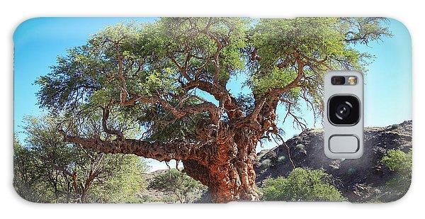 Old Gnarled Tree Galaxy Case