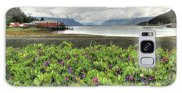 Old Haines Cannery Galaxy Case