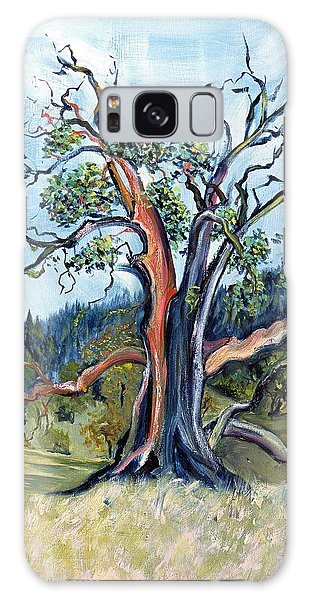 Old Madrone Tree In November  Galaxy Case