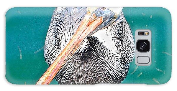 Old Man Pelican On Anna Maria Pier Galaxy Case