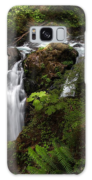 Olympic National Park Galaxy Case - Olympic National Park by Larry Marshall