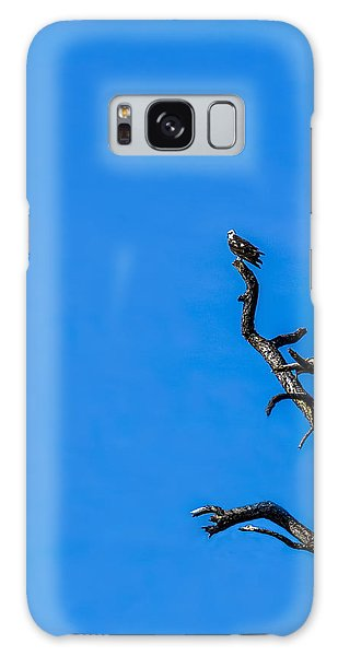Osprey Galaxy S8 Case - On Point by Marvin Spates