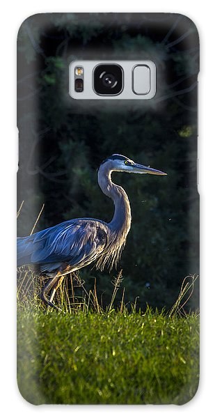 Egret Galaxy Case - On The March by Marvin Spates