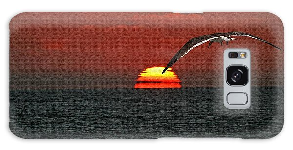 One Black Skimmers At Sunset Galaxy Case by Tom Janca