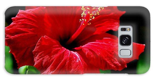 One Day Flower Galaxy Case by Marija Djedovic