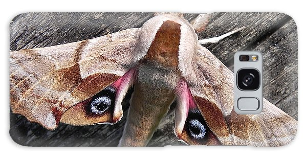 One-eyed Sphinx Galaxy Case by Cheryl Hoyle