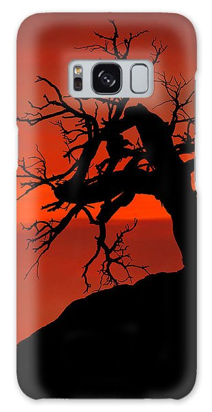 One Tree Hill Silhouette Galaxy Case by Greg Norrell