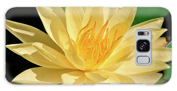 One Water Lily  Galaxy Case