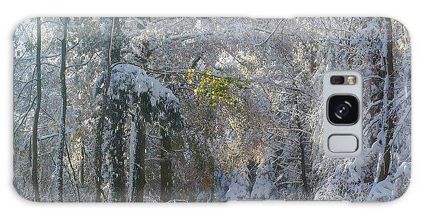 Onset Of Winter 1 Galaxy Case by Rudi Prott